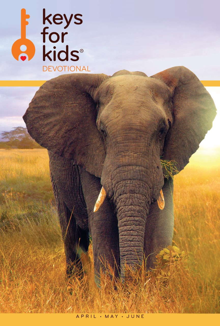 Keys for Kids Elephant Cover (1)
